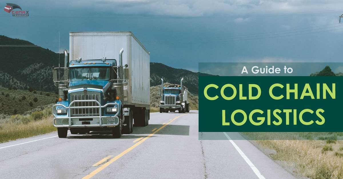 what is cold chain logistics